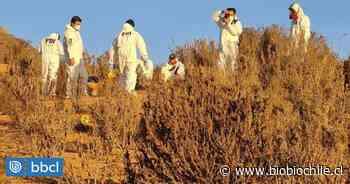 Cuerpo hallado en Quebrada del Jardín en La Serena corresponde a joven de 21 años - BioBioChile