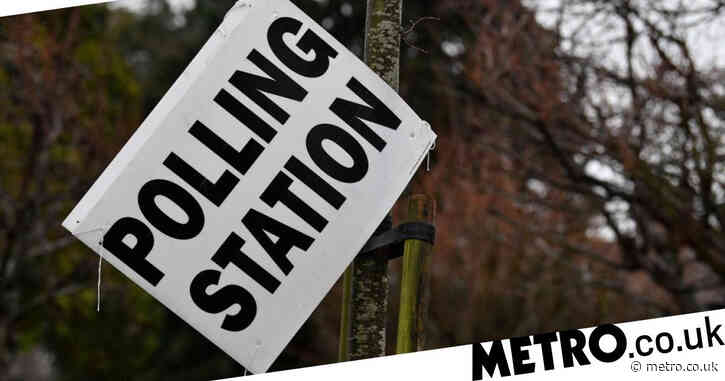 How does local election voting work?