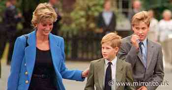 Diana got William an 'embarrassing' 13th birthday cake - but Harry loved it