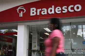 El beneficio del banco Bradesco aumenta un 73,6 % en el primer trimestre - EFE - Noticias