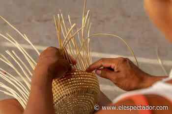 Artesanías de Colombia y el Banco Agrario se unen por los artesanos - El Espectador