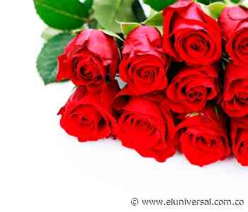 Regálale un bouquet de rosas a mamá... te enseñamos - El Universal - Colombia