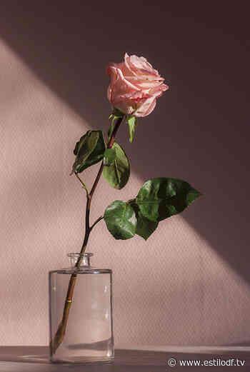 5 beneficios del agua de rosas para tu piel - Estilo DF