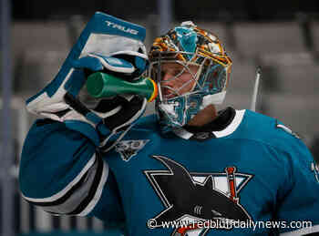 Sharks' rookie goalie to start again vs. Arizona Coyotes - Red Bluff Daily News