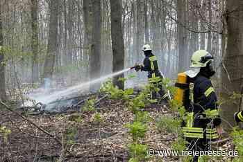 Wehr rückt zu Waldbrand in Meerane aus - Freie Presse
