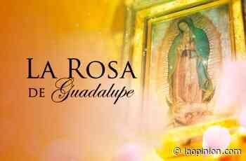 El airecito de 'La Rosa de Guadalupe' hace de las suyas en el primetime de Univision - La Opinión
