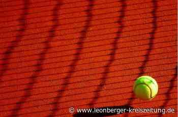 Tennisclub Rutesheim: Beste Teilnehmerquote seit Jahren - Leonberger Kreiszeitung - Leonberger Kreiszeitung