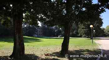 Castellanza, Liuc a misura di studente: con un open day online per le triennali - MALPENSA24 - malpensa24.it