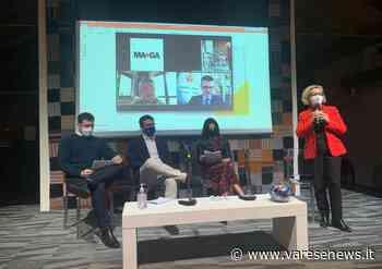"""Maga e biblioteca insieme: nasce Hic, """"Hub Istituti Culturali Gallarate"""" - varesenews.it"""