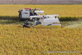 Big data helps build smarter agriculture - Chinadaily.com.cn - Chinadaily USA
