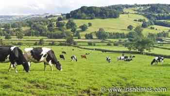 An Taisce accuses agriculture sector of 'flawed' position on carbon leakage - The Irish Times
