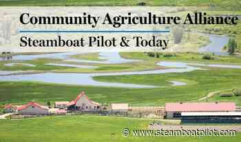 Community Agriculture Alliance: Managing noxious weeds in drought - Steamboat Pilot and Today