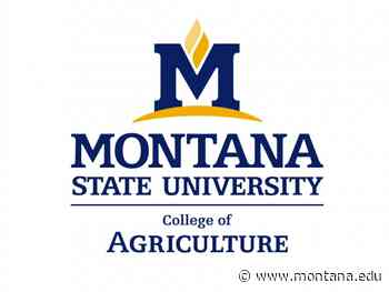 MSU College of Agriculture seeks nominations for outstanding leaders - Montana State University
