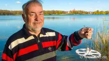 Bordesholm: Es sind viele Schritte bis zur Rettung des Sees | shz.de - shz.de