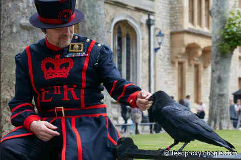 The Tower of London wants you to name a raven