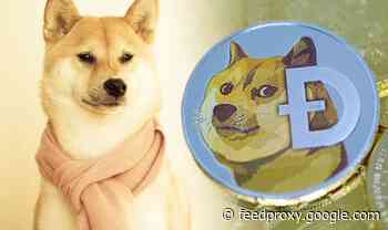 Dogecoin price breaks record-high AGAIN as Gemini and eToro adopt DOGE meme coin