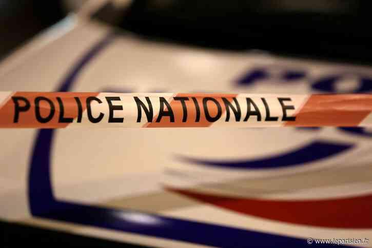 Cagnes-sur-Mer : un homme soupçonné d'avoir tué son épouse avant de tenter de se suicider - Le Parisien