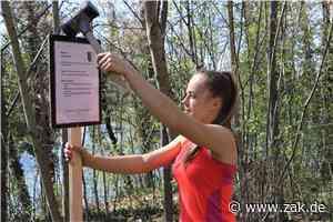 Ein Parcours für alle: Laura Schatz aus Dotternhausen vertreibt Lockdown-Frust mit Bewegung - Zollern-Alb-Kurier