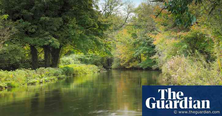 Campaigners condemn plans for New Forest desalination plant