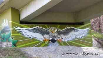 Graffitikünstler Manuel Dietsch lässt die Eule fliegen - Nordbayern.de