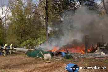 Hevige brandt verwoest tuinhuis