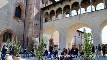 Vigevano, un'estate di eventi al Castello. Sessanta associazioni coinvolte dal 4 giugno - La Provincia Pavese