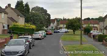 Cat 'killed with crossbow' in Bristol suburb