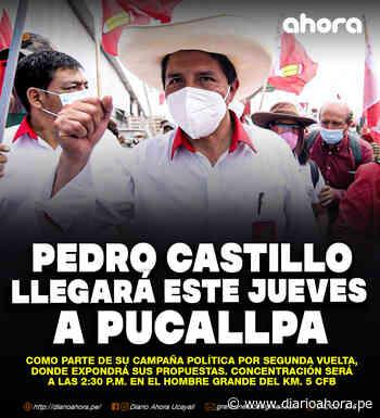 Pedro Castillo llegará a Pucallpa - DIARIO AHORA