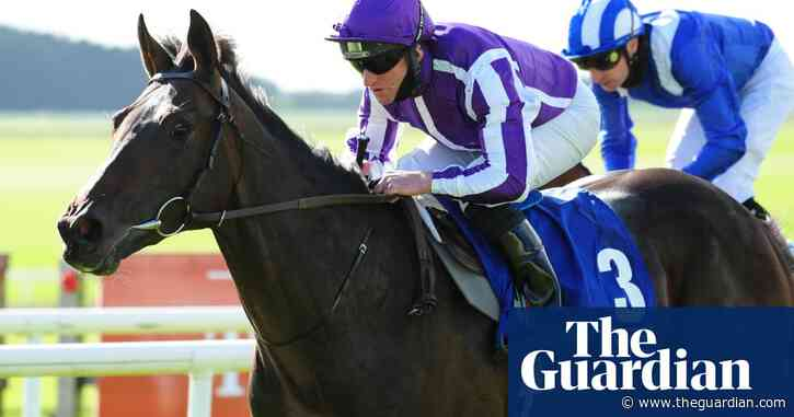 Aidan O'Brien pulls Derby favourite High Definition out of planned trial run