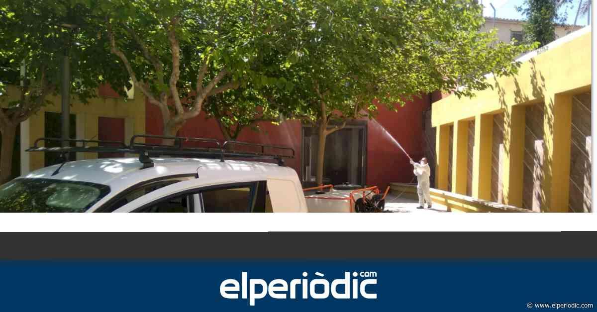 Sanidad comienza los tratamientos contra el mosquito tigre y mosquito común en Aspe - elperiodic.com