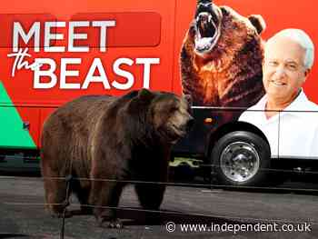 Animal rights groups hit out at Republican campaigning with bear: 'It's unfortunate and shameful'