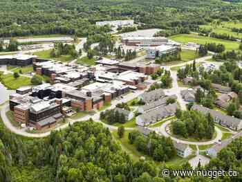 Canadore, Nipissing work on plan to help nursing students - The North Bay Nugget