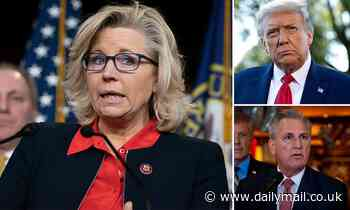 Liz Cheney pens slashing op-ed where she says the GOP must decide on 'fidelity to the Constitution'