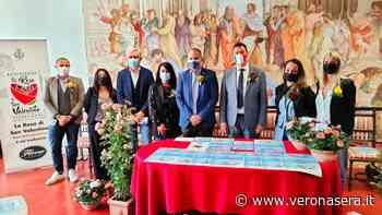 """Fiori da tutto il Mondo per la """"Festa delle Rose"""" a Bussolengo - VeronaSera"""