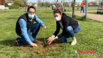 Anche Podenzano avrà il suo bosco della memoria per ricordare le vittime del Covid - IlPiacenza