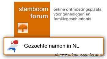 Wie weet meer van Theunis Jacobs van der Velde * voor 1702 Hof van Delft? [Onderzoek in Nederland]