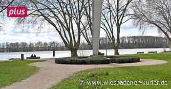 Rheinanlagen am Fliegerdenkmal in Geisenheim waren gesucht - Wiesbadener Kurier