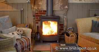 New curbs on gentrified Bristol's log burner craze