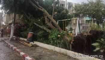 Avalancha en Dagua, Valle, deja 59 viviendas afectadas y seis destruídas - Caracol Radio