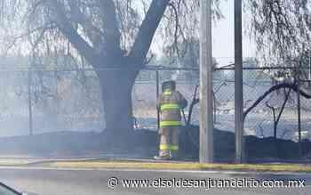 Fuerte incendio de pasto causó alarma - El Sol de San Juan del Río