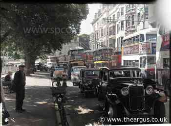 'Trolley buses could speed up Brighton hills with ease'