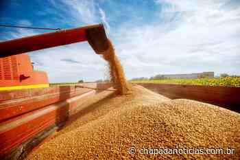 Itaberaba recebe 100 toneladas de milho para comercialização via ProVB - chapada notícias
