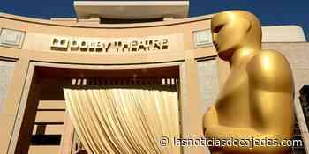 Unos premios Oscar repletos de diversidad - Las Noticias de Cojedes