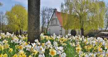 Das sind die schönsten Frühlingsbilder aus Enger und Spenge - Neue Westfälische