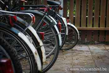 Twee 14-jarige fietsendieven opgepakt