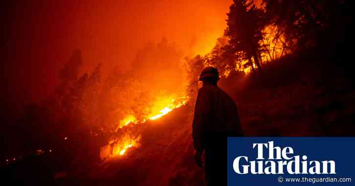 Giant sequoia found still smoldering after 2020 California wildfire