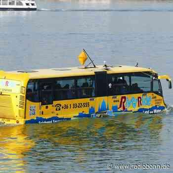 Niederkassel: Auch dort könnten Wasserbusse über den Rhein schippern - radiobonn.de