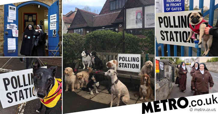 Dogs and nuns at polling booths are all we need to see this election