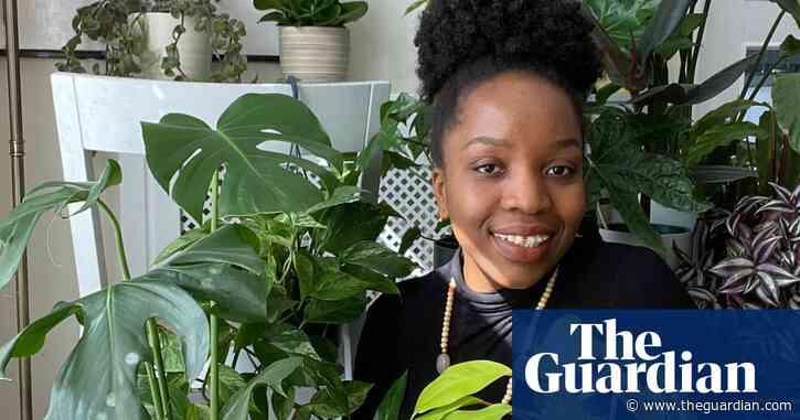 'Melon seedlings make good pets': how lockdown made us love houseplants