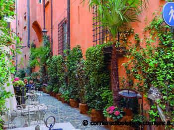 Bologna, un bosco verde sotto i portici. C'è l'ok alla sperimentazione - Corriere della Sera